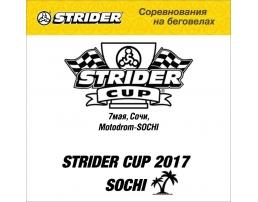 Регистрационный взнос на Strider Cup 2017 Сочи